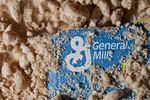 GENERAL MILLS EARNS